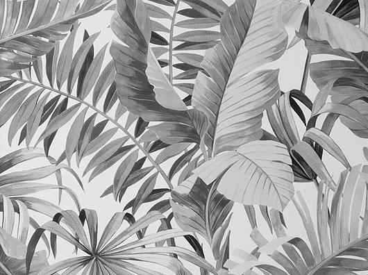 Tropical Mono Palm Leaves Pattern FD42852